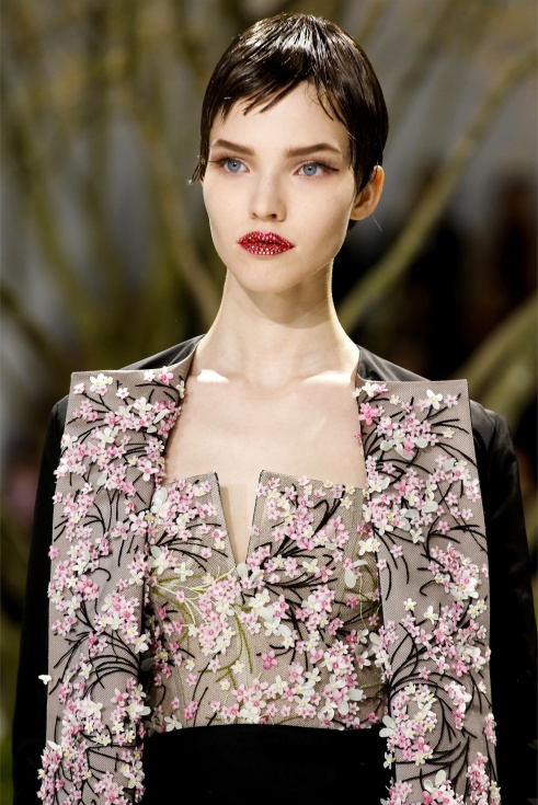 00250h Dior 2013 Spring Summer Couture