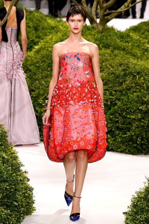 christian-dior-couture-spring-2013-40_123857630959