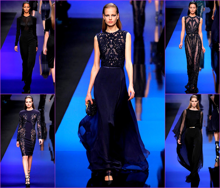 Pictures7FALL 2013 READY-TO-WEAR elie saab