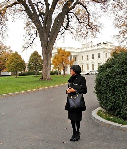 8cbaed15ea5f876a9068bac3f679dad4Mayor of Baltimore Stephanie Rawlings Blake seen with the Alexa Tote at the White House